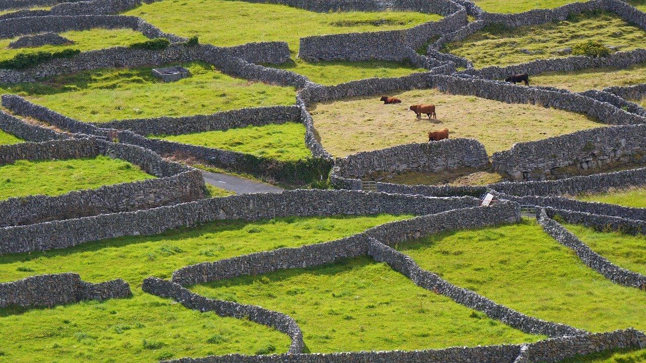 חומות אבן כפרי